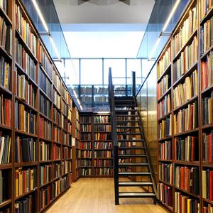 Библиотеки Мордово